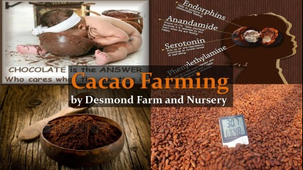 Desmond Farm and Nursery - 3rd Batch